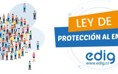 Ley de Protección al Empleo: Más de 86 mil empresas han solicitado acogerse