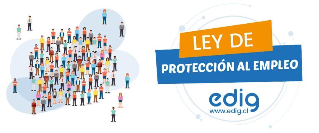 Cómo aplicar la Ley de Protección al Empleo con el Sistema de Remuneraciones Edig