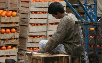 Proyecto que regula el trabajo adolescente será ley: Multas más duras y nuevos requisitos