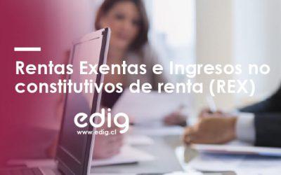 REX: Rentas Exentas e Ingresos no constitutivos de renta